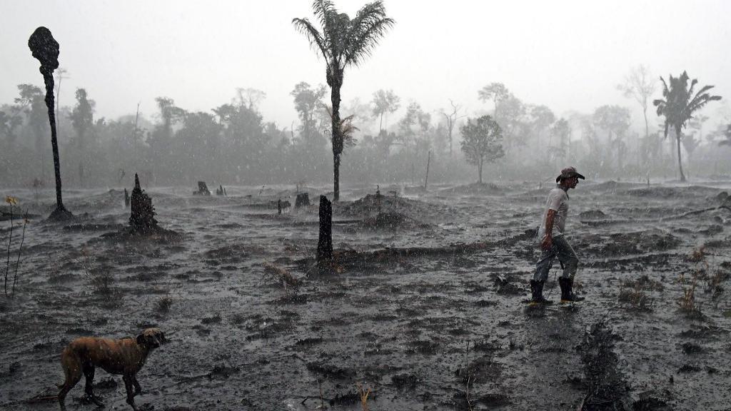 Tragédia anunciada: Amazônia continua ardendo