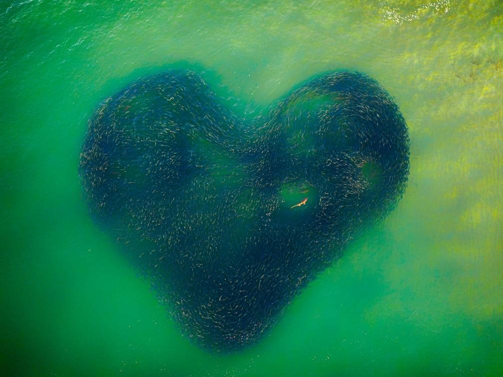 'Love Heart of Nature