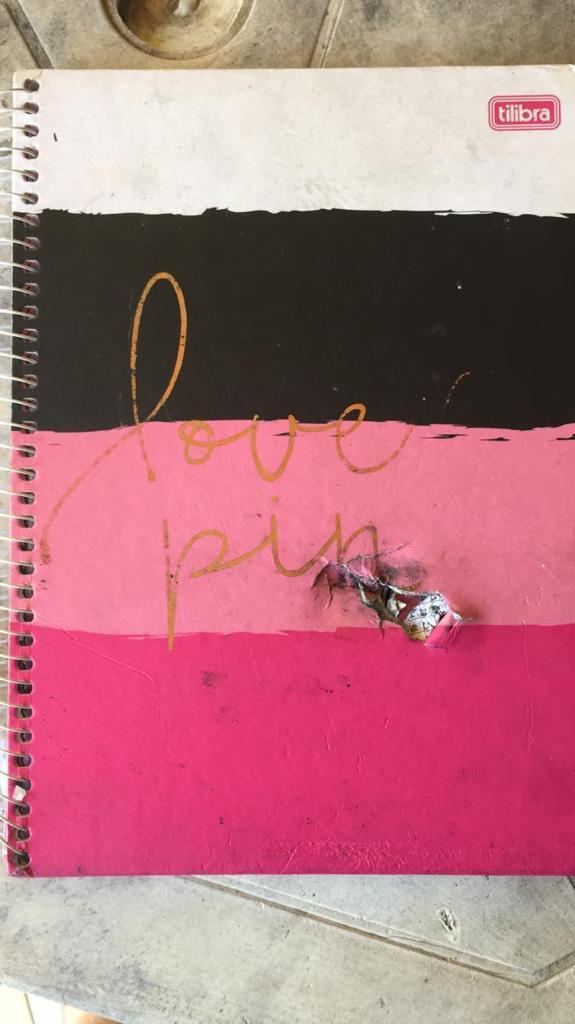 Um carregador portátil e um caderno que estavam dentro da mochila da universitária foram baleados