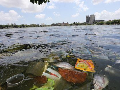Poluição na lagoa do Porangabussu