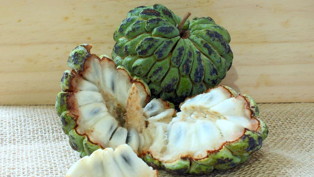 Uma fruta-do-conde cortada em pedaços e outra inteira. Frutas estão em uma mesa