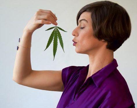 Mães deixei de fumar online livre de despesas